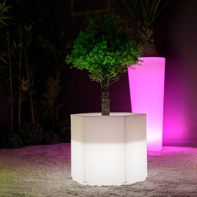 Vaso luminoso a LED multicolore - HEXAGONE S