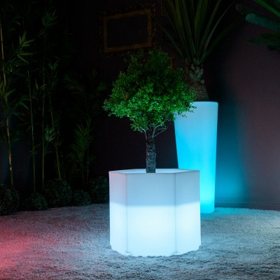 Pot Lumineux à LED Multicolore - HEXAGONE S