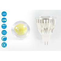 Ampoule LED MR16 12 Watts blanc chaud