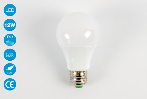 Ampoule LED E27 12 Watts Blanc Froid