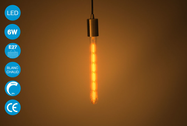 Ampoule LED vintage Edison 6W - Blanc chaud - T300