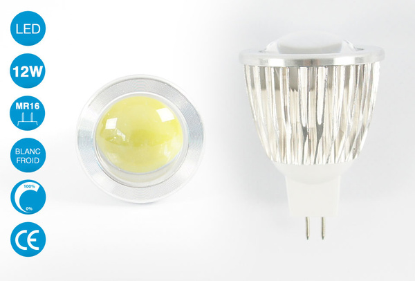Ampoule LED MR16 12 Watts blanc froid